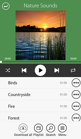 Music Player Mobile App Development